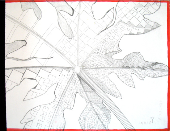 Nature Series Set 3