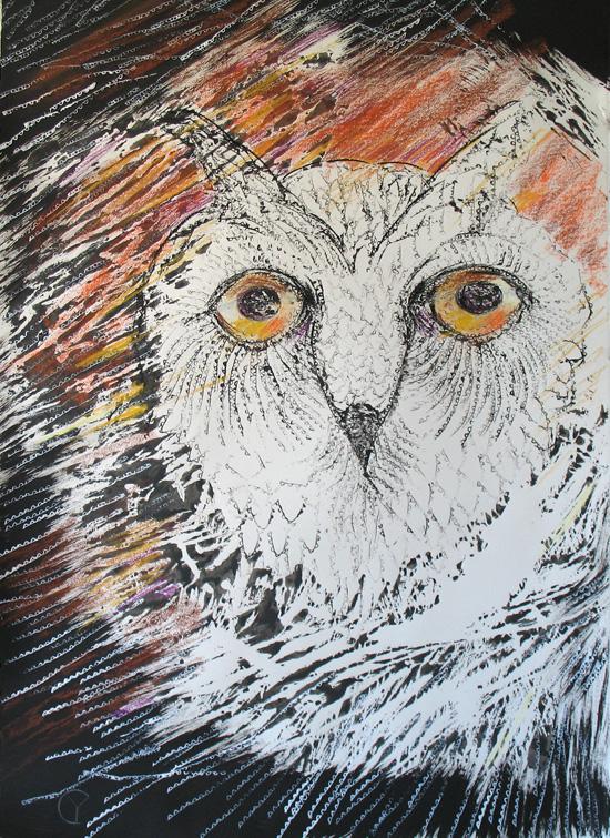 The Eyes of Wisdom