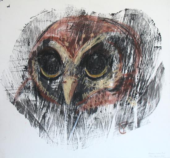 Mexican Wood Owl (strix squamulata)