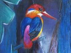 The Kingfisher Series No7